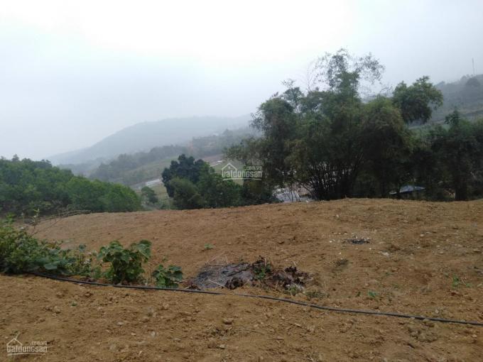 Bán 4452m2 400m thổ tại Hòa Sơn Lương Sơn bám đường oto công đi được view cánh đồng giá dưới 800k/m
