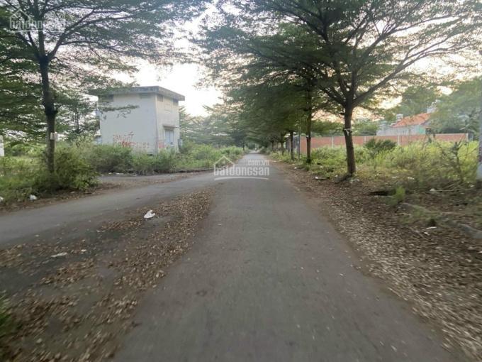 Bán đất biệt thự Quận 9 Bưng Ông Thoàn 440m2 sổ hồng riêng dự án thời báo kinh tế ảnh 0