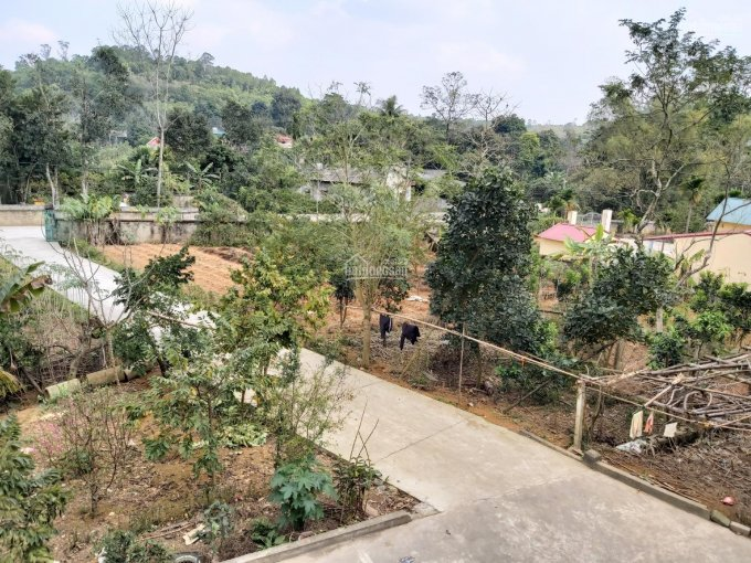 Bán nhà đất tiện làm nhà xưởng hoặc biệt thự tại Phú Thọ diện tích 2758m2 đường vào 6m ảnh 0