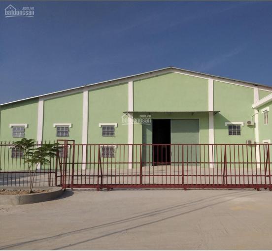Địa ốc Song Long cần cho thuê nhà xưởng mới xây dựng trong cụm nhà xưởng công ty tại xã Đất Cuốc