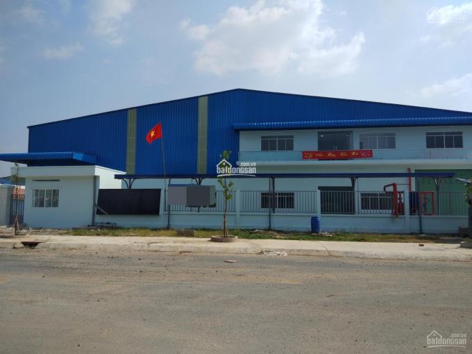 Cho thuê xưởng 3900m2 giá 262 triệu khu công nghiệp Hải Sơn Đức Hoà Hạ, tỉnh Long An