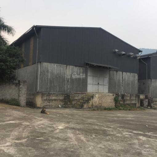 Bán 5000m2 đất xưởng tại Quốc Oai giá chỉ 800.000/m2 công vào thoải mái ảnh 0