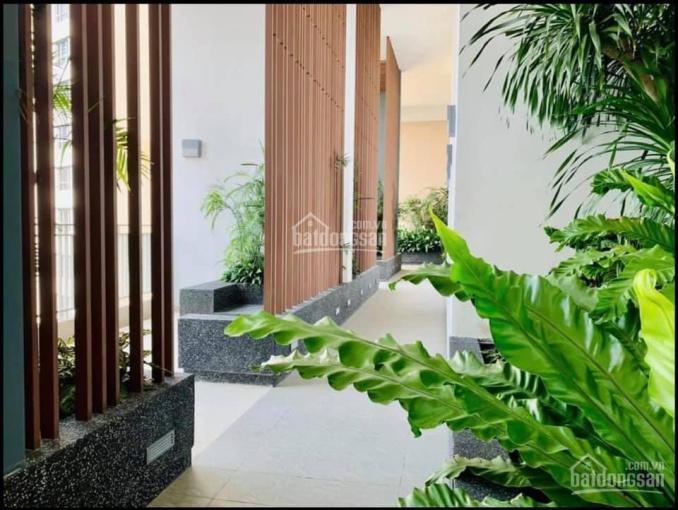 Bán căn Palm Heights - Keppel Land Q2 căn sân vườn 23f hiếm - Duy nhất 1 căn ảnh 0