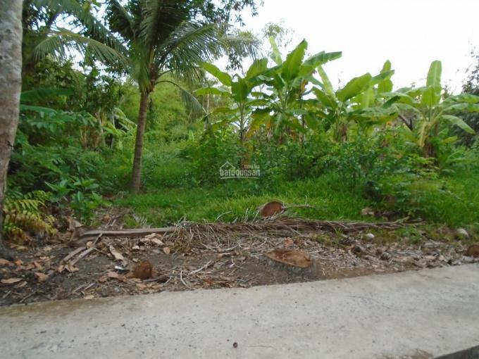 Đất nền kề khu bệnh viện Nguyễn Đình Chiểu 2, Phú Tân, DT: 2.160m2, giá: 6 tỷ ảnh 0
