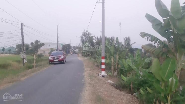 Chính chủ bán 2178m2 lúa mặt tiền đường Tây Bắc, xã Thuận Thành, Cần Giuộc. 1,4tr/m2 ảnh 0