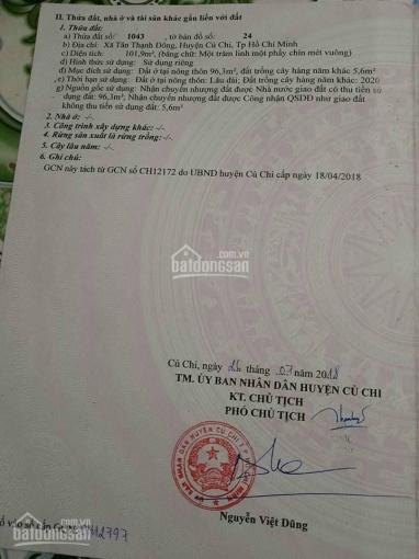 Bán đất Củ Chi thổ cư 101,9m2 đường Nguyễn Kim Cương, Tân Thạnh Đông giá 800tr ảnh 0