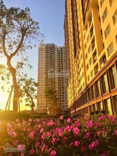 Bán lỗ vốn căn hộ 2 phòng ngủ 2WC giá 1.95 tỷ The Park Residence - 0909220855 ảnh 0