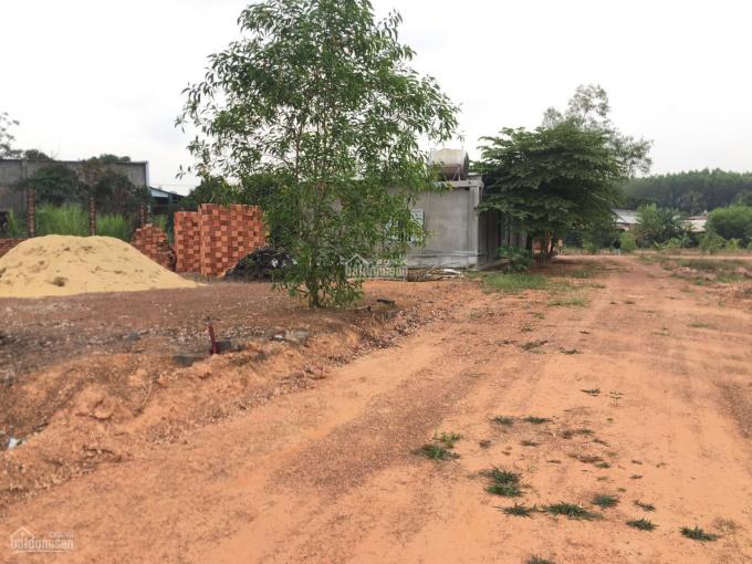 Chỉ cần 450 triệu sở hữu ngay lô đất hơn 547m2 tại TT Vĩnh An, Vĩnh Cửu, sổ hồng cầm tay (bán gấp) ảnh 0
