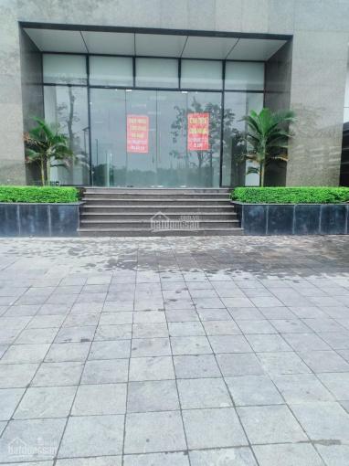 Nam An Khánh - chính chủ cần tiền bán gấp TT thương mại tầng 1 tòa nhà Gemek Tower, LH 0946673333 ảnh 0