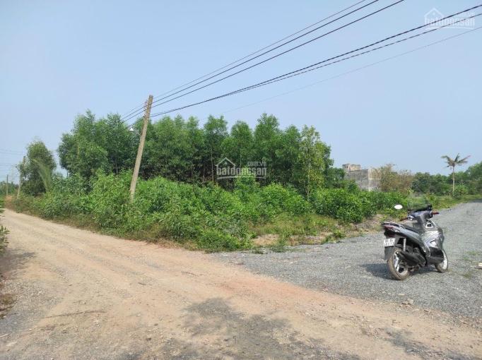 Cần bán lô đất vườn xã Phú Đông, 950 triệu/1000m2 ảnh 0