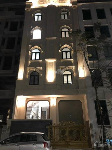 Chính chủ cần cho thuê gấp nhà phố Liễu Giai Ba Đình DT: 130m2 x 5 tầng MT: 7m, sàn gỗ giá: 22tr/th ảnh 0