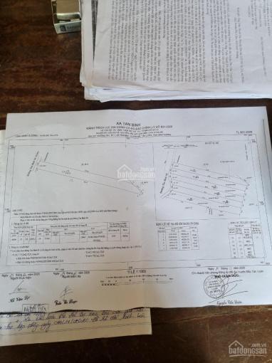 Bán lô ngay Tân Bình 04 cách mặt tiền ĐT 741 50m, diện tích 2000m2 giá đầu tư ảnh 0