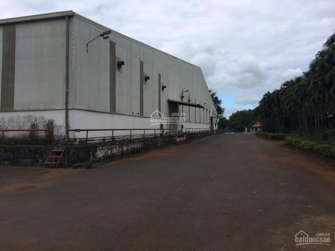 Nhà xưởng 11.000m2, tổng diện tích đất 23.000m2 cụm công nghiệp Tân An, Buôn Ma Thuột ảnh 0