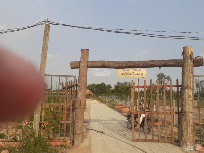 Bán lô đất vườn 600m2, giá chỉ 1,8tr/m2. Mặt tiền nhánh sông Sài Gòn. Thích hợp xây nhà vườn ảnh 0