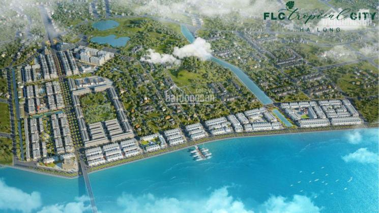Cần bán nhanh ô 2 mặt thoáng phân khu Palm Village - FLC Tropical City Hạ Long, 75m2 giá 34.5 tr/m2 ảnh 0