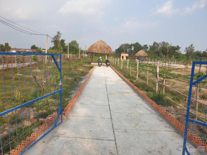 Bán lô đất trồng cây lâu năm 600m2, giá 1,8tr/m2. Tỉnh Lộ 15, Phú Hòa Đông ảnh 0