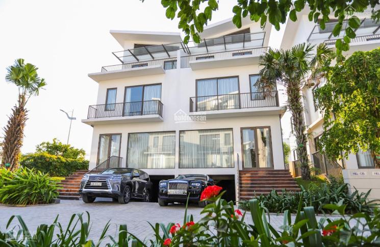 Siêu hấp dẫn! Căn góc biệt thự đơn lập Khai Sơn Hill, tặng 3 năm DV+1 tỷ CK 15% lãi suất 0% 30-36th ảnh 0