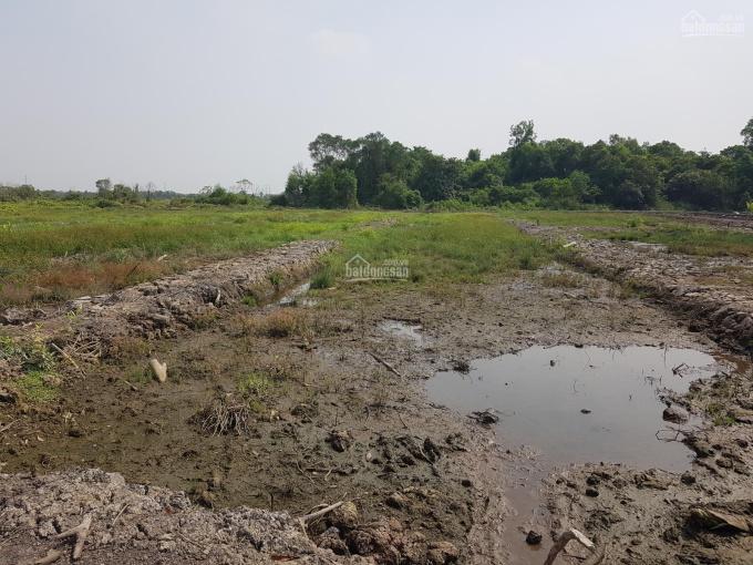 Đất vườn 1040m² để trồng cây, chăn nuôi giá 800tr ảnh 0