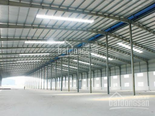 Cho thuê kho xưởng 1000m2 đến 5000m2 mới xây thuê dài hạn mặt tiền đường Trung Mỹ Tây 13, Quận 12 ảnh 0