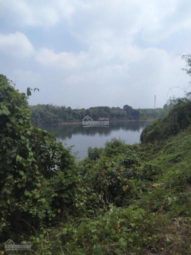 Chính chủ cần bán vườn cam 10.000m2 view sông Đồng Nai ảnh 0
