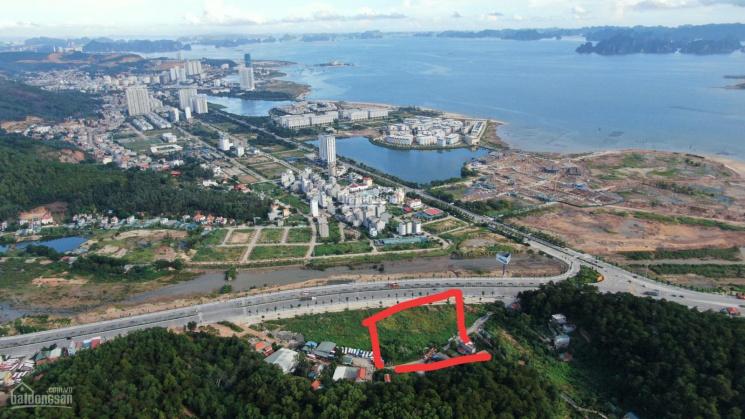 Bán 8000 m2 đất mặt quốc lộ 18, giao Hoàng Quốc Việt, Bãi Cháy, Hạ Long, LH: 0988911588 ảnh 0