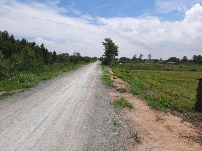 Chính chủ cần bán đất mặt tiền Long An, huyện Thanh Hóa, xã Tân Hiệp, lộ cập Kênh 61, DT 9225 m2 ảnh 0