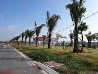 Khu đô thị Mega City 2, Nhơn Trạch, Phú Hội, Đồng Nai, sở hữu ngay chỉ với 750tr ảnh 0