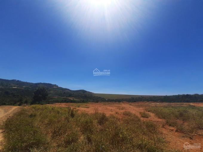 Đất nghỉ dưỡng siêu đẹp Đức Trọng, Lâm Đồng ảnh 0