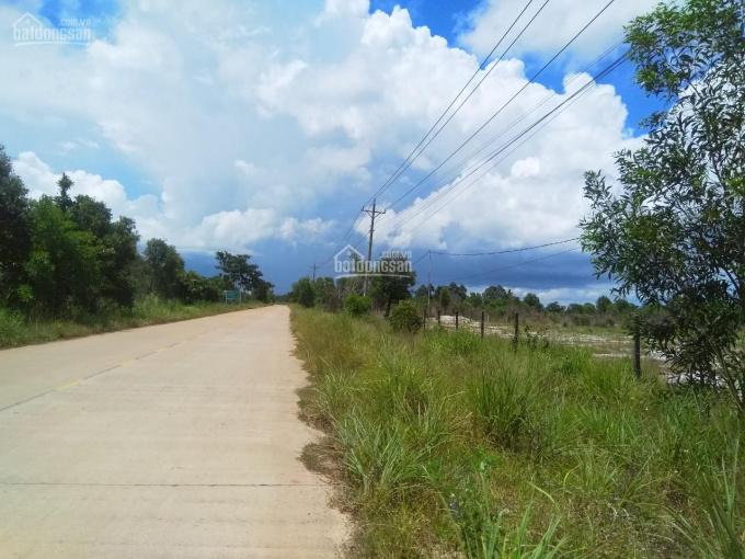 Bán đất biển Hàm Ninh, Phú Quốc, DT 3000m2, 5 tỷ/công, thổ cư 400m2 ảnh 0