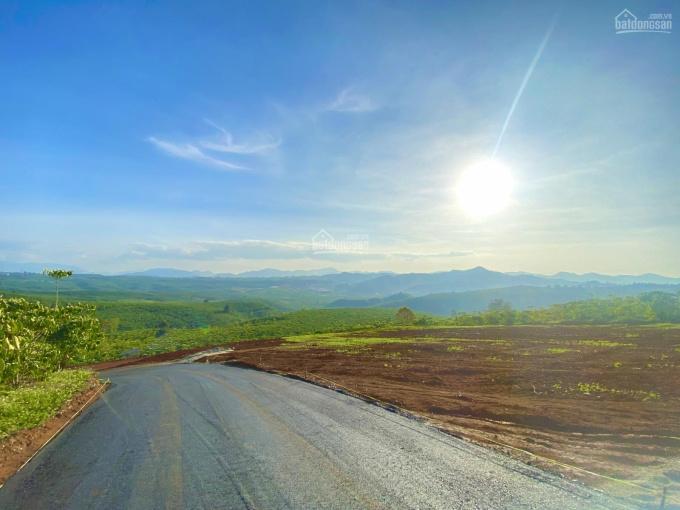 (Nhà em ba đời bán đất SG, đến em bán đất Lộc Tân vì quá đẹp) view đồi cao ngắm trọn Bảo Lộc - SHR ảnh 0