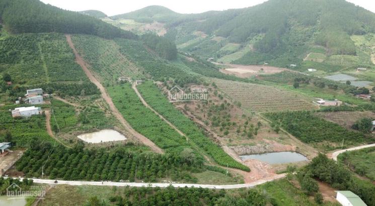 Bán miếng đất xã Bãi Thơm TP Phú Quốc 3ha, 1.8tr/m2 giá đầu tư, vị trí gần biển, suối 0909229291 ảnh 0
