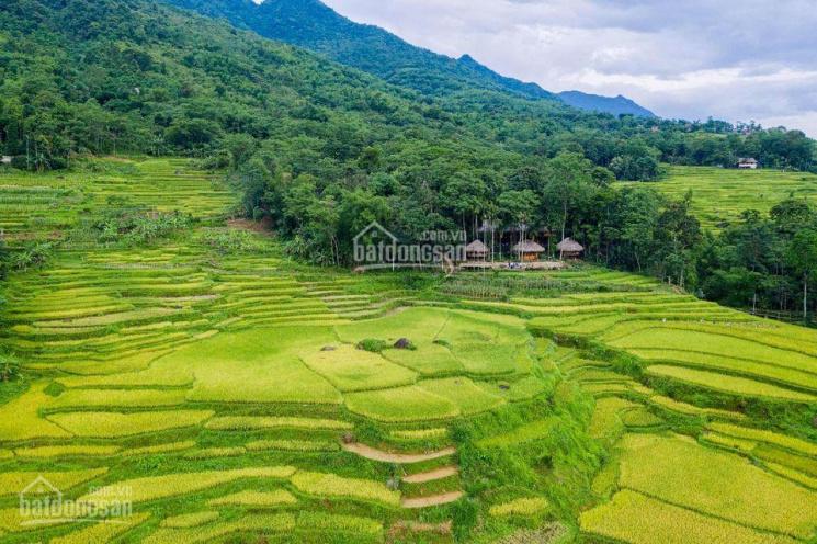 Chính chủ bán trang trại kèm đất thổ cư tại KDL Pù Luông, H. Bá Thước, Thanh Hóa ảnh 0