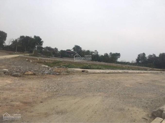 Còn 3 lô đất duy nhất tại dự án Yên Ninh, Yên Định ảnh 0