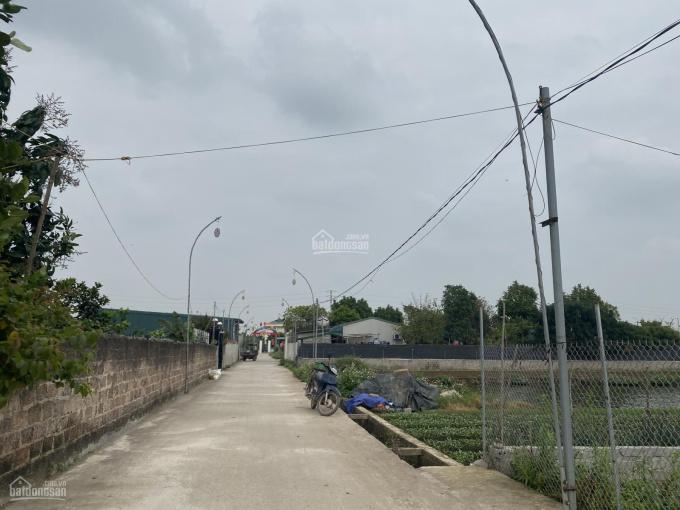 Bán nhà đất xã Hồng Vân, Thường Tín, Hà Nội ảnh 0