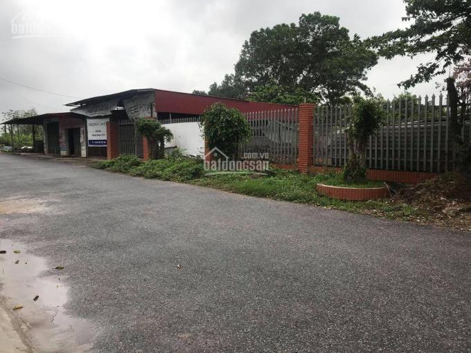 Đất sản xuất kinh doanh 50 năm trả tiền 1 lần vị trí đẹp tại Ý Yên, Nam Định gần Ninh Bình cần bán ảnh 0