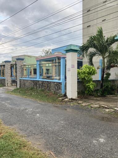 Nhà yến và nhà cấp 4, đường oto tới cổng, bán hoặc cho thuê nhà. Liên hệ ngay chủ: 0907090675 ảnh 0
