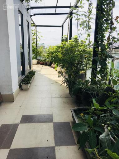 Bán căn hộ sân vườn 135m2 + 20m2 ban công, 3PN + 2WC, tòa T1, chung cư TSQ - Euroland giá 3.2 tỷ ảnh 0