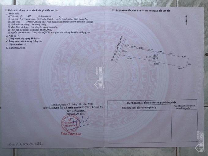 Bán 5935m2, ngay mặt tiền Dương Thị Ngọc Hoa, Cần Giuộc, Long An ảnh 0