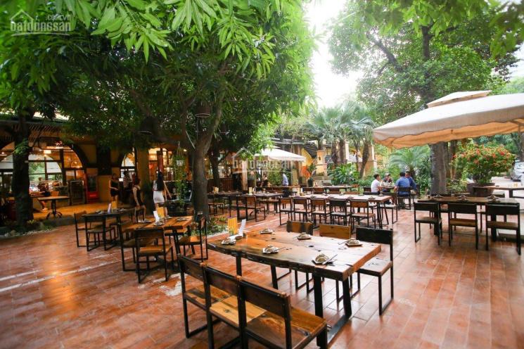 Cho thuê hoặc sang nhà hàng MT đường Phan Huy Ích DT 30x65m ảnh 0