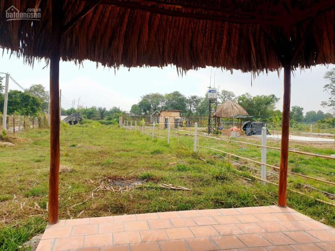 Bán nhà vườn mặt tiền kênh, xã Phú Hòa Đông, Củ Chi. Diện tích từ 600 - 1600m2 giá 1tr9/m2 ảnh 0