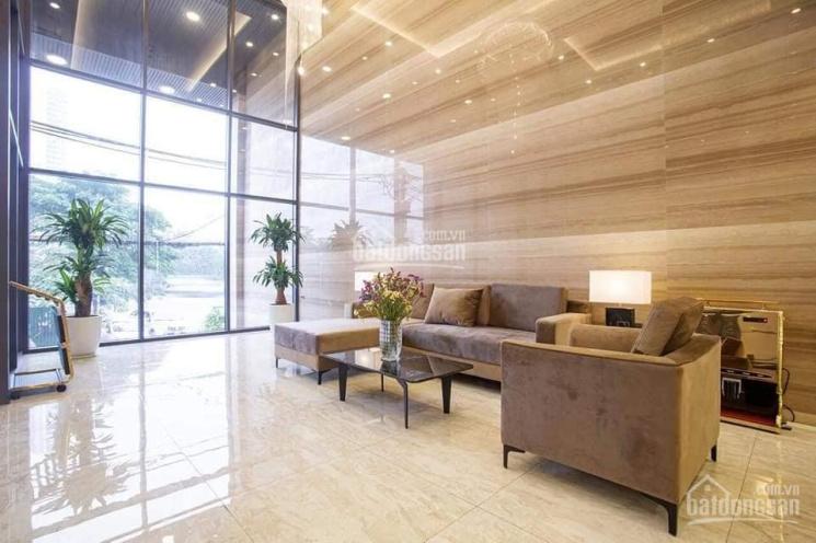 Bán nhà mặt phố Hoàng Cầu - Đống Đa, DT: 216m2, 8 tầng, MT khủng, view hồ, kinh doanh đỉnh ảnh 0