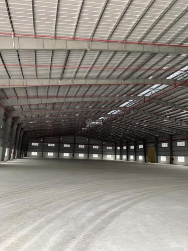 Kho xưởng lớn diện tích 11.000m2 khu công nghiệp Tân Bình ảnh 0