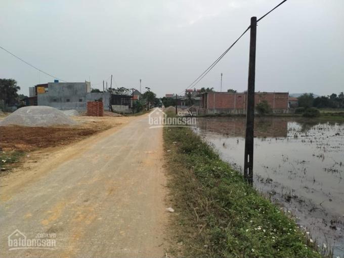 Bán đường trục đường UBND Trường Giang - Nông Cống, cách UBND chỉ 200m ảnh 0