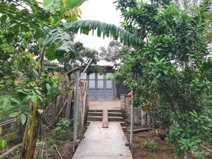 Cho thuê nhà vườn làm xưởng mặt đường An Dương Vương. Lh 0903405268 ảnh 0