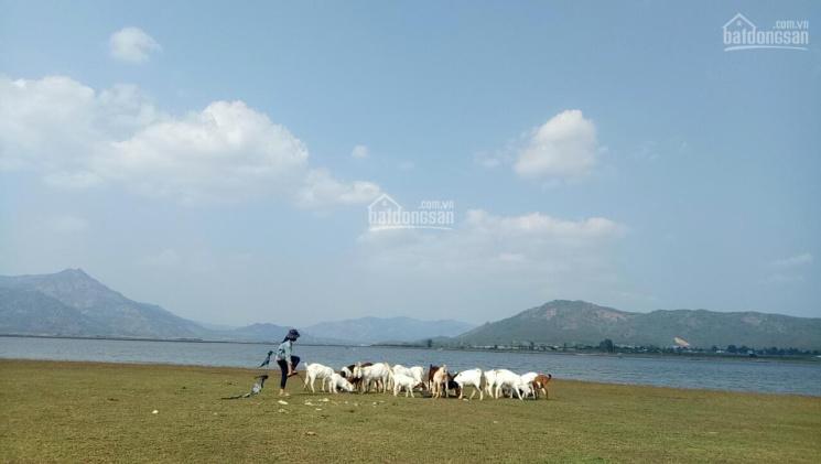 Bán đất view hồ ngay khu vực Tiên Sơn PleiKu ảnh 0
