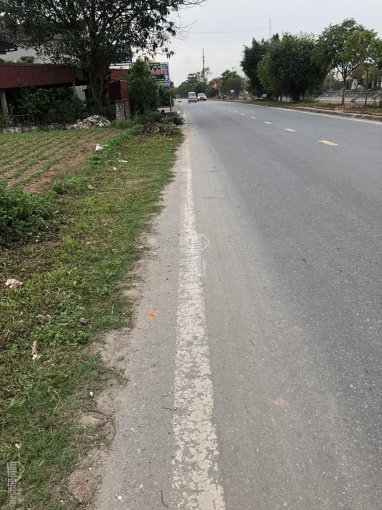 Cần bán đất mặt đường TL 489, khu vực xóm 3 Quyết Tiến, Giao Tiến, Giao Thủy, Nam Định ảnh 0