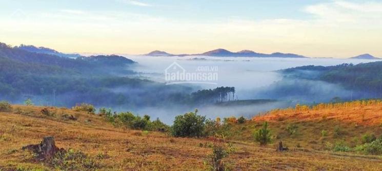 Bán 4500m2 đất săn mây, nghỉ dưỡng, view cao cực đỉnh ảnh 0