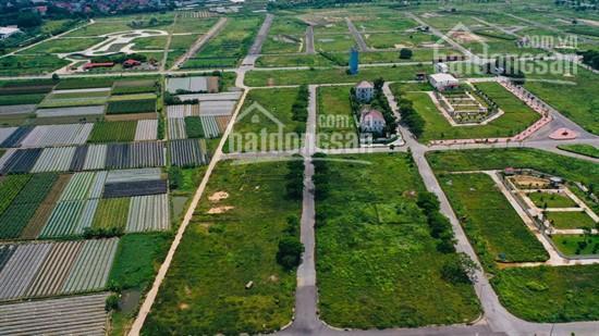 Cơ hội đầu tư! Bán đất nền liền kề biệt thự Cienco5 H Mê Linh, giá hợp lý. 0988821518 ảnh 0