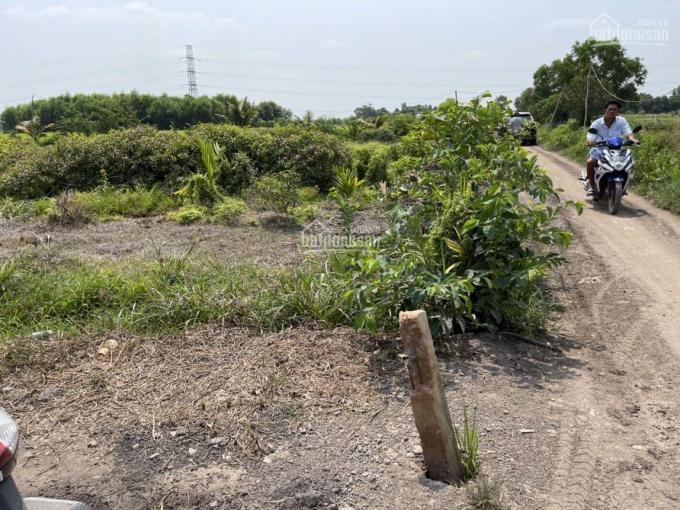 Đất vườn An Tây 69, Bến Cát, 5000m2 đường xe hơi vào tận đất thích hợp đầu tư làm vườn, nghỉ dưỡng ảnh 0