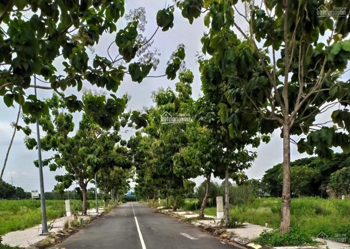 Tổng hợp một số nền đất Phú Gia, Kiến Á Cát Lái Q2 cần bán gấp trong tháng 07/2021. LH 0941112209 ảnh 0